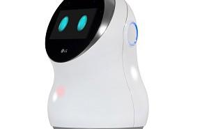 lg-hub-robot